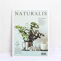 Bìa Ảnh Tạp Chí 1 Mặt, Đạo Cụ Chụp Ảnh Trang Trí B8521