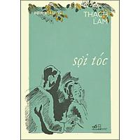 Sợi Tóc (Việt Nam Danh Tác)