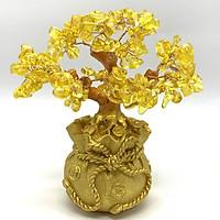 Cây tài lộc đá thạch anh vàng mang may mắn cho mọi nhà - Tặng 1 vòng tay gỗ mun 12 ly