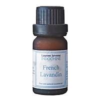 Tinh dầu Oải hương Pháp - Lavender Oil France