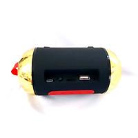 Loa Bluetooth Cầm Tay Mini Ws100 Âm Thanh Chất Lượng, Màu Sắc Đa Dạng Bắt Mắt (Cắm Usb, Thẻ Nhớ Tf, Cổng 3.5 - Hàng nhập khẩu