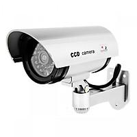 Camera giám sát thân dài mô hình dọa trộm CCD
