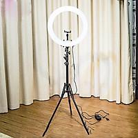 Bộ Đèn Led Livestream  kèm giá đỡ đt (Full chân Đỡ & kẹp điện thoại)