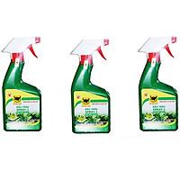 Combo 3 chai phân bón lá pha sẵn cho Hoa lan và cây cảnh dạng xịt Đầu Trâu Spray 1 (500ml/chai)