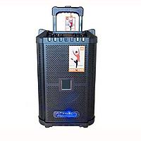 Loa kéo di động karaoke j0806 có 2 micro