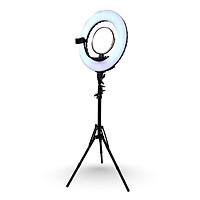 Đèn LiveStream Chuyên Nghiệp Beauty Light - Đa Chức Năng