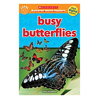 Scholastic Discover More Reader Lvl 1: Busy Butterflies