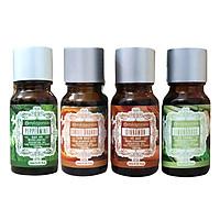 Bộ Tinh Dầu Khử Mùi Không Gian Milaganics: Tinh Dầu Bạc Hà + Tinh Dầu Sả Chanh + Tinh Dầu Cam Ngọt + Tinh Dầu Vỏ Quế (10ml/Chai)