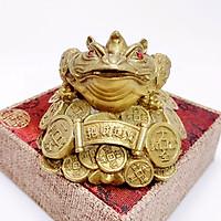 Tượng Thiềm Thừ Bằng Đồng Kim Tiền Jewelry - Mang Tài Lộc Vào Ngôi Nhà Bạn - Gia Tặng Vượng Khí Cho Gia Chủ