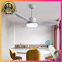 Quạt Trần Đèn Simple Personality Fan Lamp STA8604X