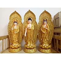 Phật Tây Phương Tam Thánh Lá Đề