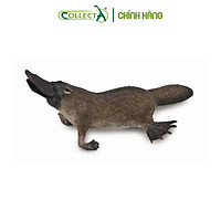 Mô hình thu nhỏ: Thú Mỏ Vịt - Platypus, hiệu: CollectA, mã HS 9651310 [88795] -  Chất liệu an toàn cho trẻ - Hàng chính hãng