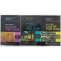 Đại Cương Lịch Sử Việt Nam 3 tập (combo)