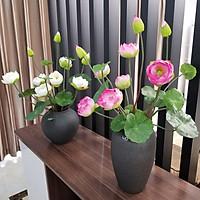 Hoa lụa, Hoa sen cung đình cao cấp - Krishna trang trí phòng khách, văn phòng, cửa hàng, quán cà phê