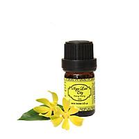 Tinh Dầu Ngọc Lan Tây - Ylang Ylang Essential Oil - Hoa Thơm Cỏ Lạ