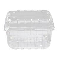 [Set 30] Hộp Nhựa Trong Đựng Trái Cây P1000B 185x122x128mm