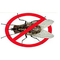 1 gói thuốc diệt ruồi TOPFLY 10WG THU HÚT MẠNH – DIỆT RUỒI NHANH GỌN ( Gói 20g )