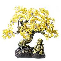 Cây Tài Lộc - Cây Đá phong thủy Thạch Anh tự nhiên Vạn Sự Như Ý VietGemstones