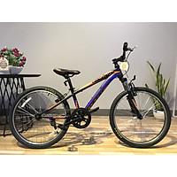 Xe đạp địa hình Phoenix Echo 4.0