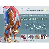 Các Tư thế Chính trong Yoga - Hướng dẫn về Giải phẫu Chức năng trong Yoga