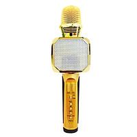 Micro SD-10 karaoke Bluetooth Có thể lưu bài và Mở nhạc - Hàng chính hãng