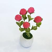 Chậu hoa đất sét mini - Cây cúc bách nhật (phát màu ngẫu nhiên)