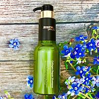 Dầu gội Sophia Platium Collagen Repair Shampoo phục hồi tóc hư tổn Hàn Quốc 500ml