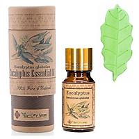 Tinh dầu khuynh diệp tặng đá khuếch tán - Eucalyptus E.O