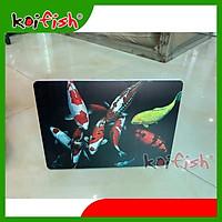 Koifish - tranh/ảnh trang trí, để bàn phong cách, đặc biệt