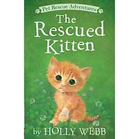Kitten ( The Rescued Kitten)