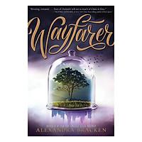 Passenger: Wayfarer - Passenger