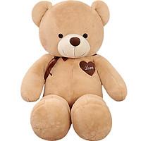 Gấu Bông Teddy Kích Thước Lớn
