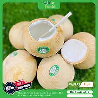 [ Chỉ Giao Hà Nội ] Trái Dừa Tươi Tiện Lợi Safefruits (size M)