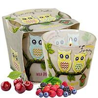 Ly nến thơm tinh dầu Bartek Funny Owls 115g QT00668 - hương quả ngọt (giao mẫu ngẫu nhiên)
