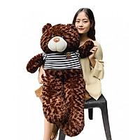 Gấu bông teddy cao cấp khổ vải 1m2 cao 1m
