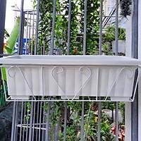 Combo khung sắt - chậu chữ nhật 65*25*20cm trồng hoa, rau treo lan can ban công