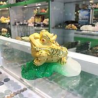 Thiềm thừ vàng kim sa ngậm xâu vàng trên lá cải ngọc xanh FLN107