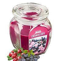 Hũ nến thơm tinh dầu Bolsius Wild Cranberry 305g QT024365 - việt quất hoang dã