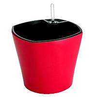 CHẬU TỰ DƯỠNG THÔNG MINH: Trồng cây nội thất để bàn, tự tưới thẩm thấu, có phao báo nước, nhựa ABS cao cấp an toàn, 3 màu lựa chọn