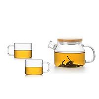 Combo bình lọc trà thủy tinh Samadoyo S048H209 470mL