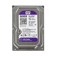Ổ cứng HDD 500G Western Tím - Tặng cáp dữ liệu SATA 3.0