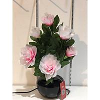 Bình hoa đèn led sợi quang đổi màu - bình hoa trang trí - bình hoa hồng cắm điện 220V - BH082