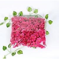 50 bông hoa đào,mai vải trang trí Tết