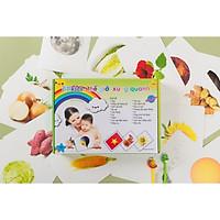 Thẻ Flashcard  Glenn Doman Cho Bé - Bộ 300 Thẻ Thế Giới Xung Quanh