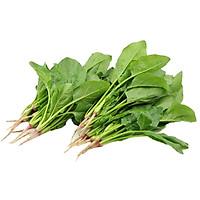 Cải Bó xôi, Rau Chân Vịt -  Rau củ quả tươi sạch, rau xanh Đà Lạt - 1kg