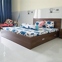Giường Vai Đứng FINE FG155 (160cm x 200cm) Mẫu hiện đại tối giản, thiết kế đẹp sang trọng