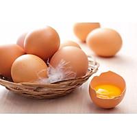 [Chỉ Giao HCM] Trứng Gà Tươi Sạch - Vỉ 10 quả