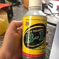 Vitamil B-1 HVP Bổ Sung Vi Lượng Cho Cây 100ml
