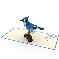 Thiệp 3D pop up Chim Giẻ Cùi Lam