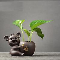 Tượng phong thủy chú heo nâu trồng cây Bình An
